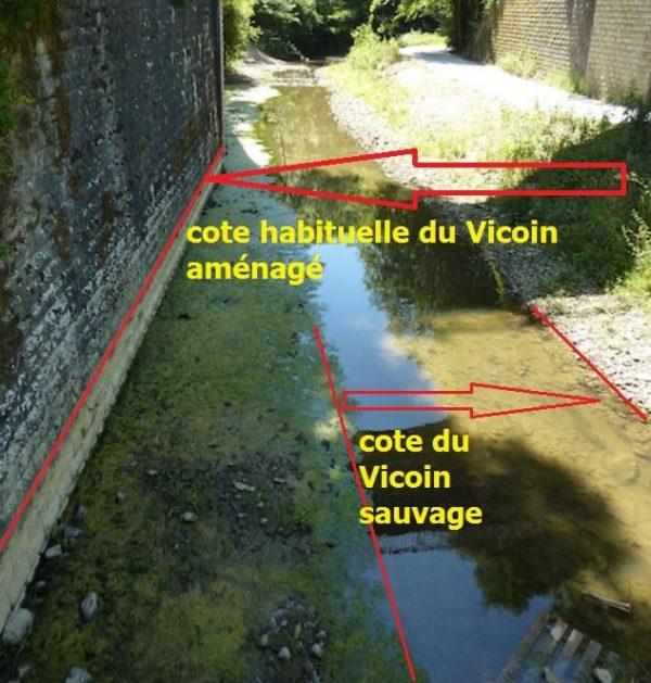 Vicoin sauvage_cote