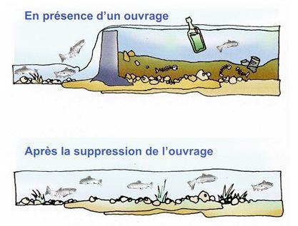 une rivière aménagée permet de capter nos déchets