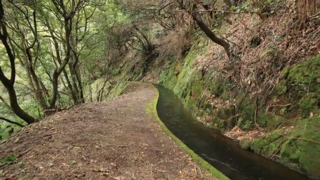 canal d'irrigation à Madère
