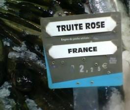 truite rose 02